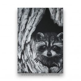Little Peeking Raccoon